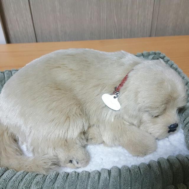 [업믐] 잠탱이강아지인형 - 상품이미지